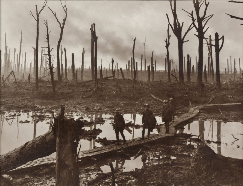 Chateau Wood, near Hooge in the Ypres salient, 29 October 1917