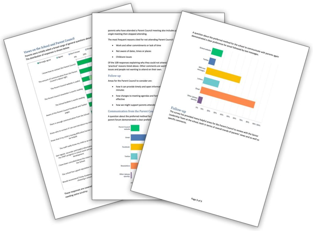 Thumbnails of pages from the report